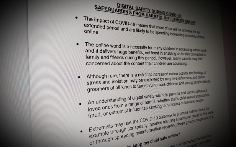 DIGITAL SAFETY DURING COVID-19: SAFEGUARDING FROM HARMFUL INFLUENCES ONLINE