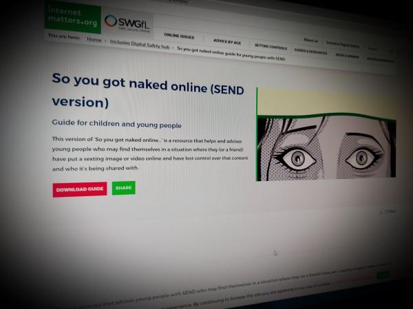 So you got naked online (SEND version)