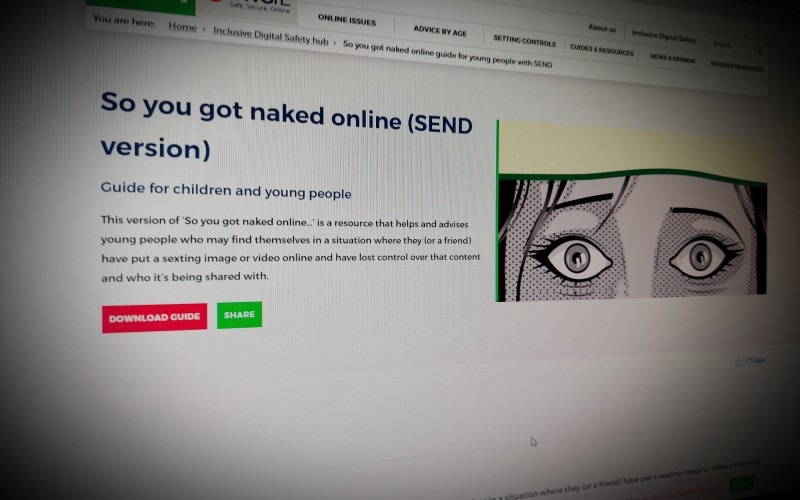 So you got naked online (SEND version)
